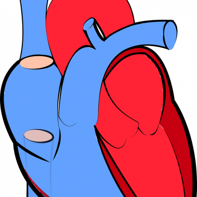 Hopp om bättre behandling vid hjärtsvikt